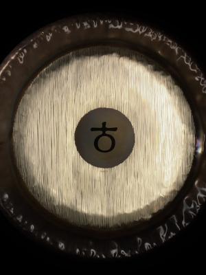 30″ Planet Gong F2 Platonic Year